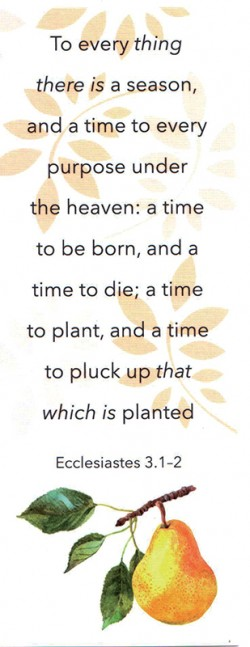 BOOKMARK - Ecclesiastes 3:1-2 (C)