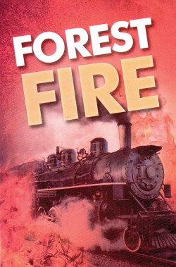 Forest Fire. . . Gospel Tract- 10 Pack